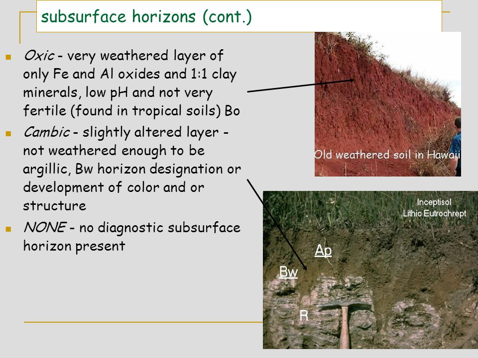 subsurface horizons (cont.)