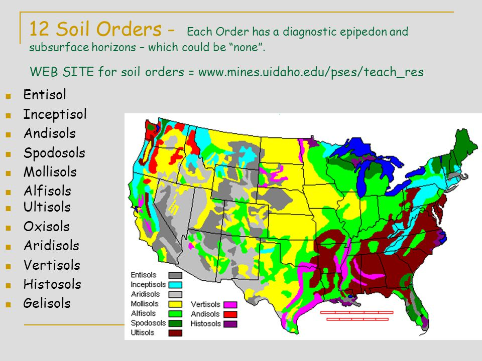 12 Soil Orders - Each Order has a diagnostic epipedon and subsurface horizons – which could be none . WEB SITE for soil orders = www.mines.uidaho.edu/pses/teach_res