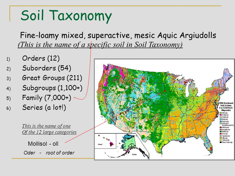 Soil Taxonomy Fine-loamy mixed, superactive, mesic Aquic Argiudolls