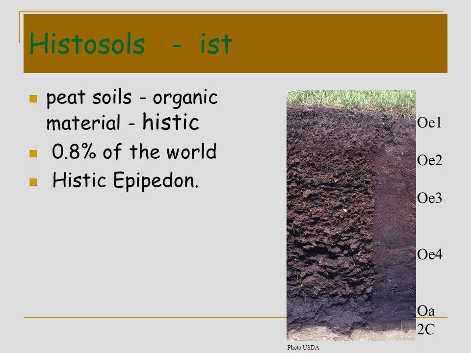 Histosols - ist peat soils - organic material - histic