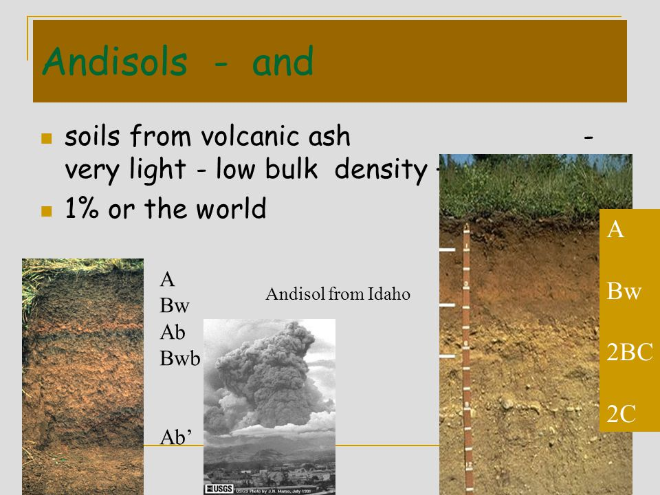 Andisols - and soils from volcanic ash - very light - low bulk density –