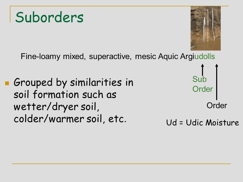 Suborders Fine-loamy mixed, superactive, mesic Aquic Argiudolls. Sub. Order.