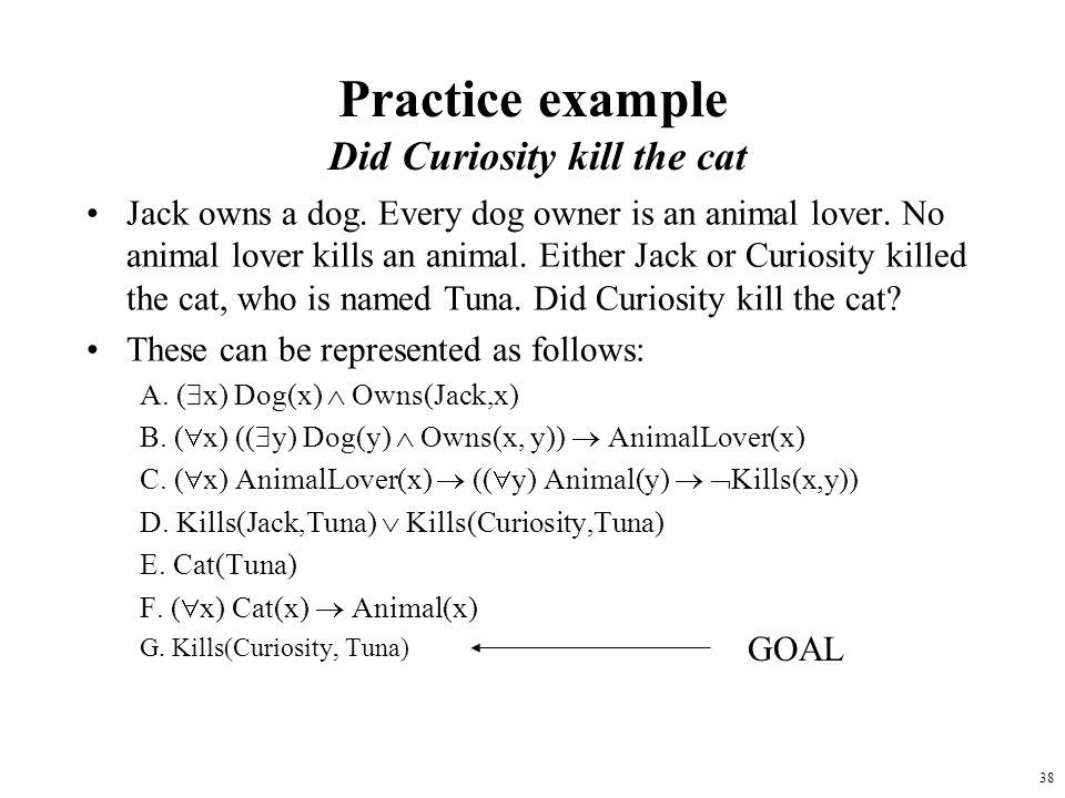 Practice example Did Curiosity kill the cat
