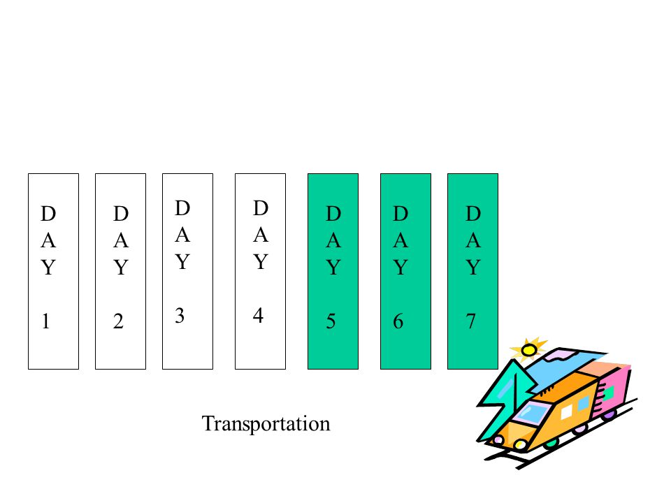 D A Y 3 D A Y 4 D A Y 1 D A Y 2 D A Y 5 D A Y 6 D A Y 7 Transportation