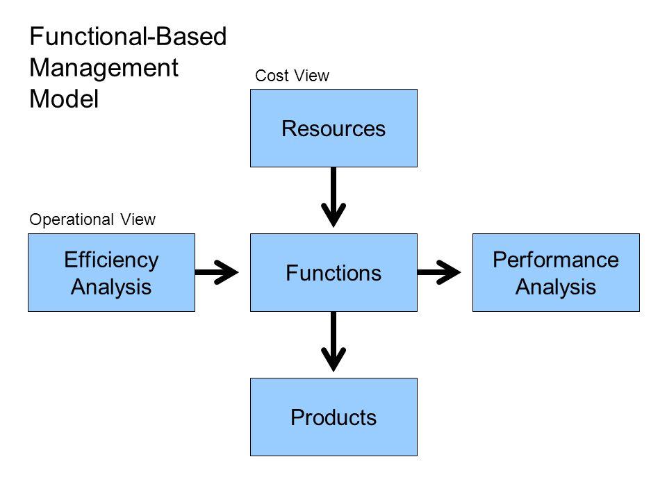 Functional-Based Management Model