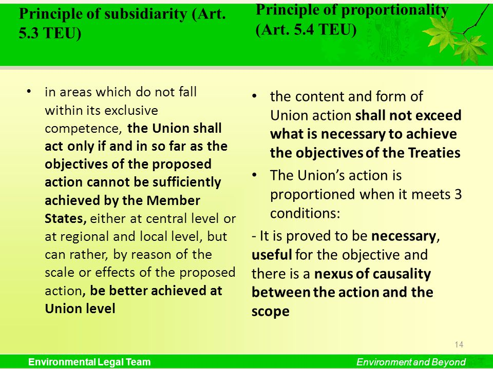 Principle of proportionality (Art. 5.4 TEU)