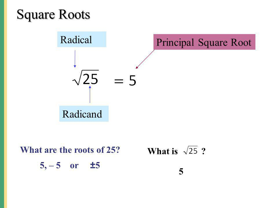Square Roots Radical Principal Square Root Radicand