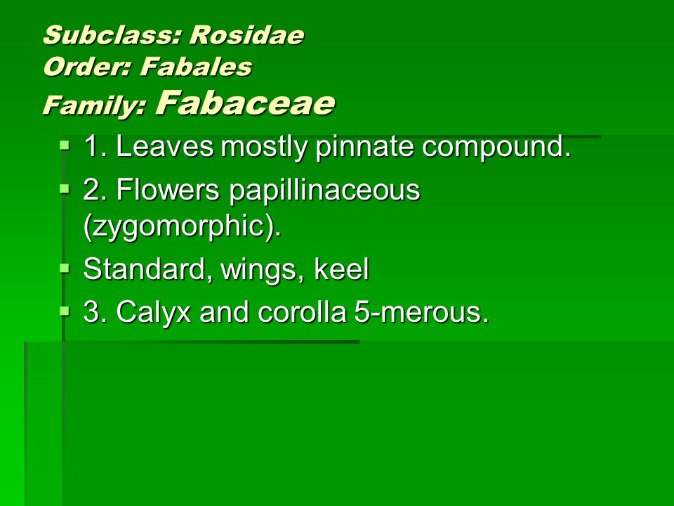 Subclass: Rosidae Order: Fabales Family: Fabaceae