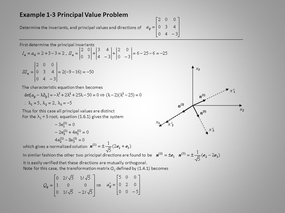 Example 1-3 Principal Value Problem