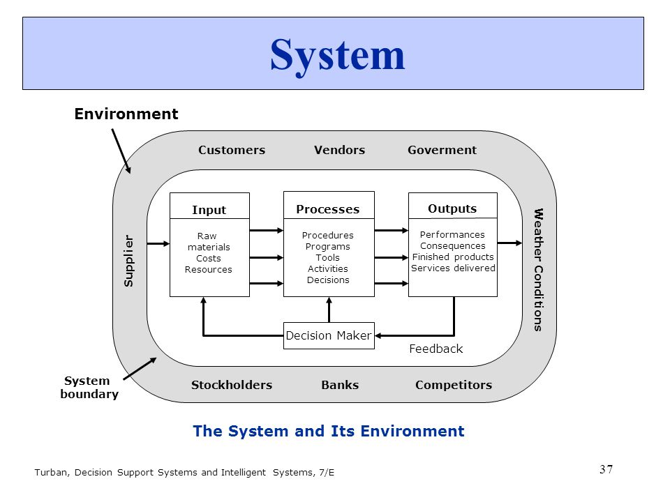 The System and Its Environment