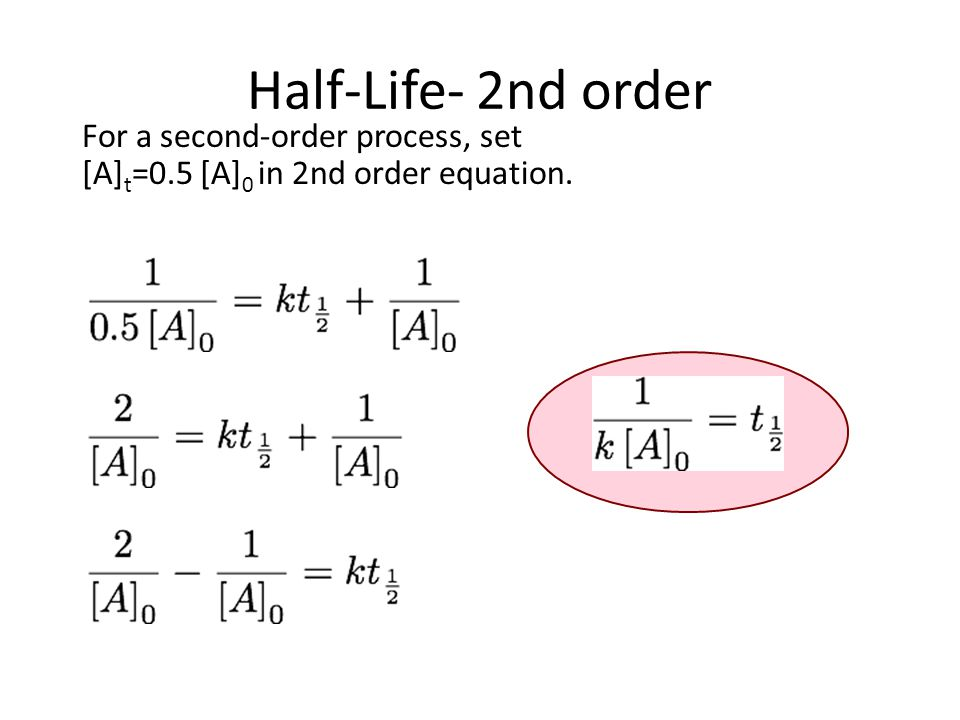 life in half a second pdf
