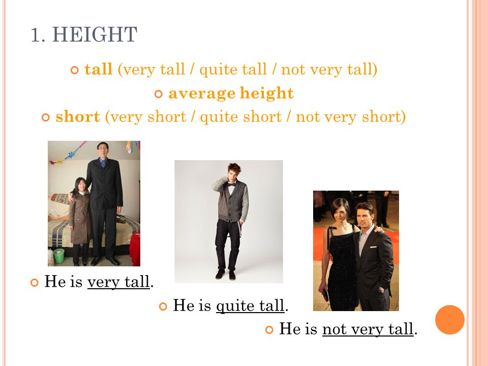 1. HEIGHT tall (very tall / quite tall / not very tall) average height