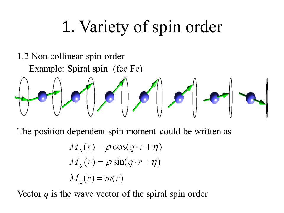 1. Variety of spin order