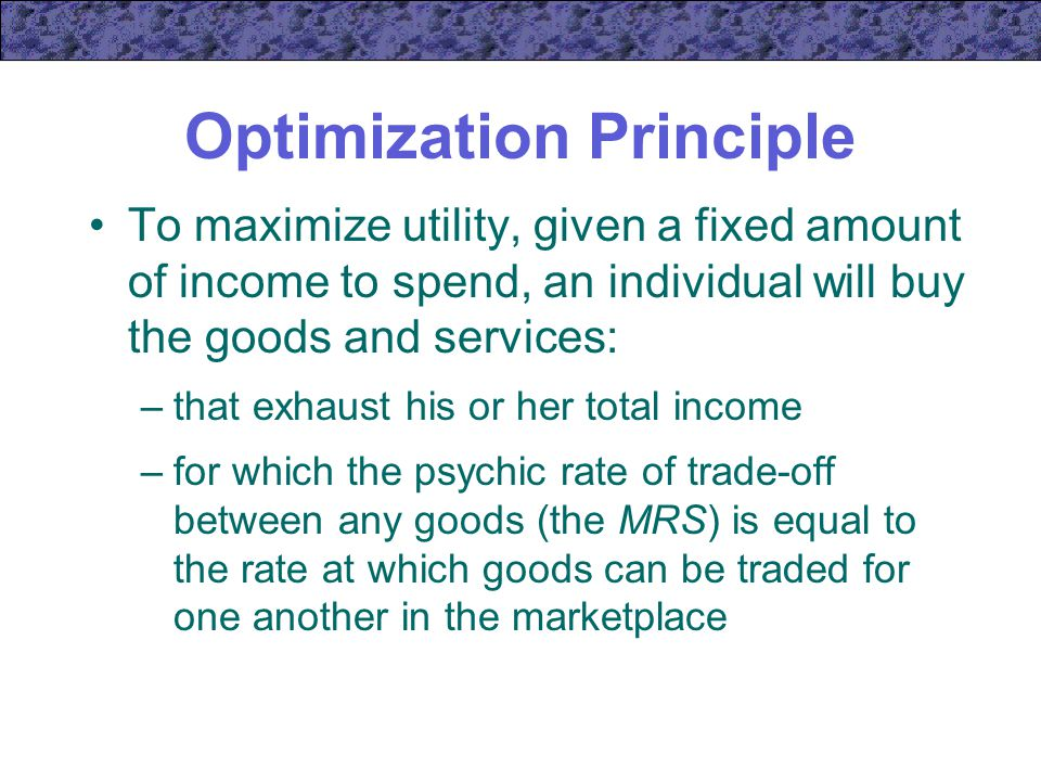 Optimization Principle