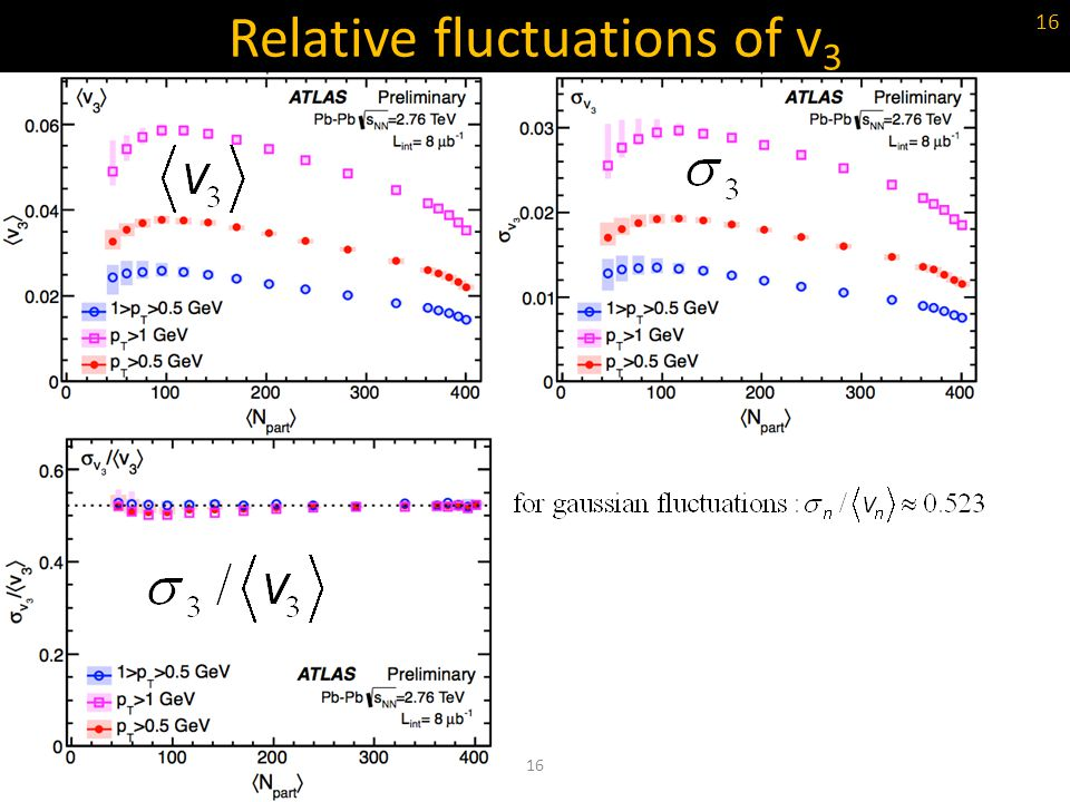 Relative fluctuations of v3
