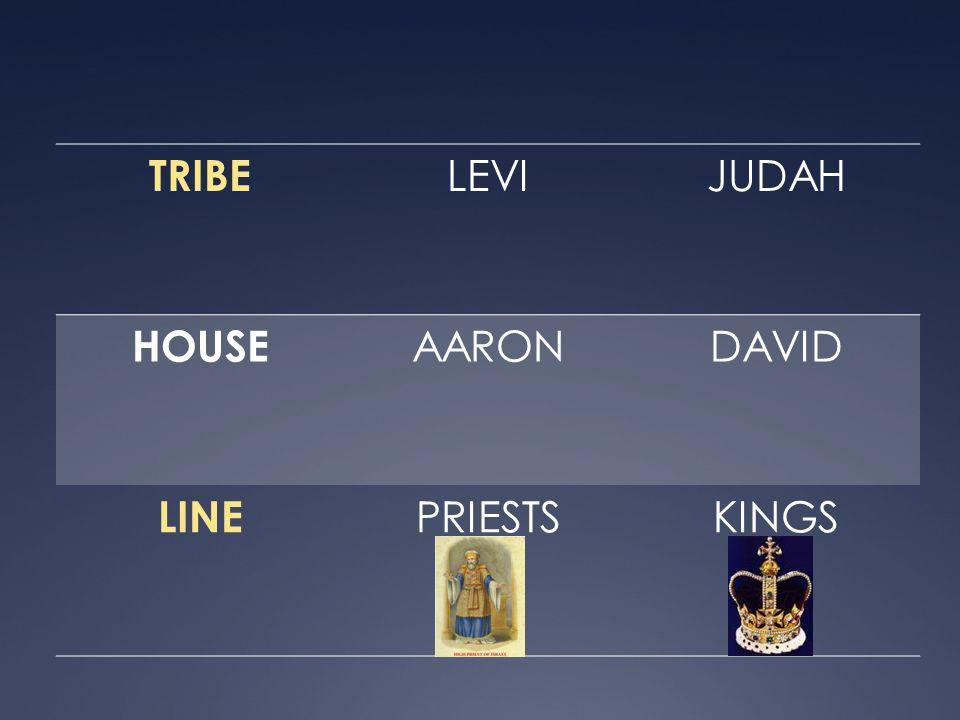 TRIBE LEVI JUDAH HOUSE AARON DAVID LINE PRIESTS KINGS