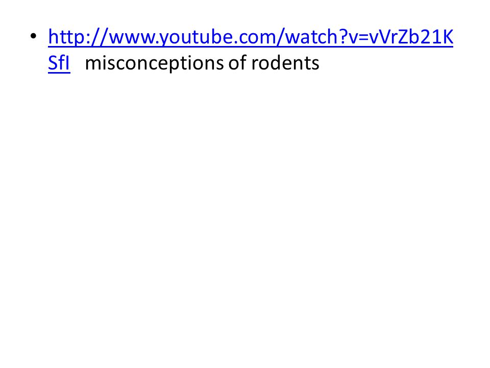 http://www.youtube.com/watch v=vVrZb21KSfI misconceptions of rodents