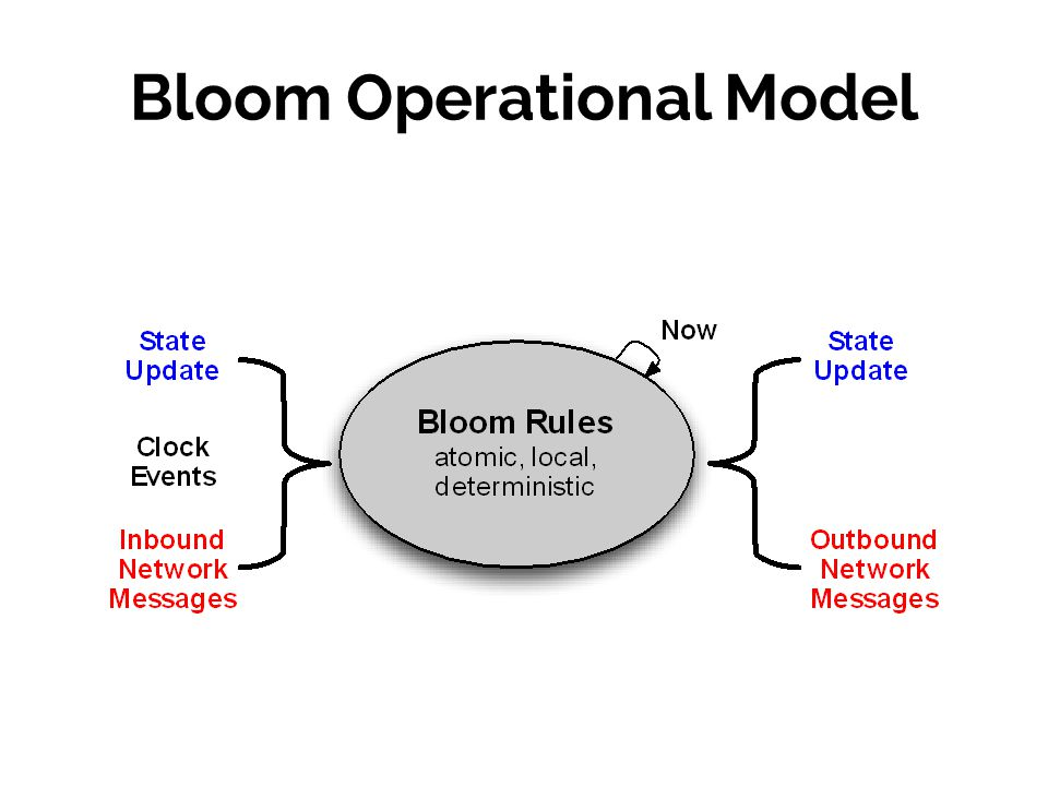 Bloom Operational Model