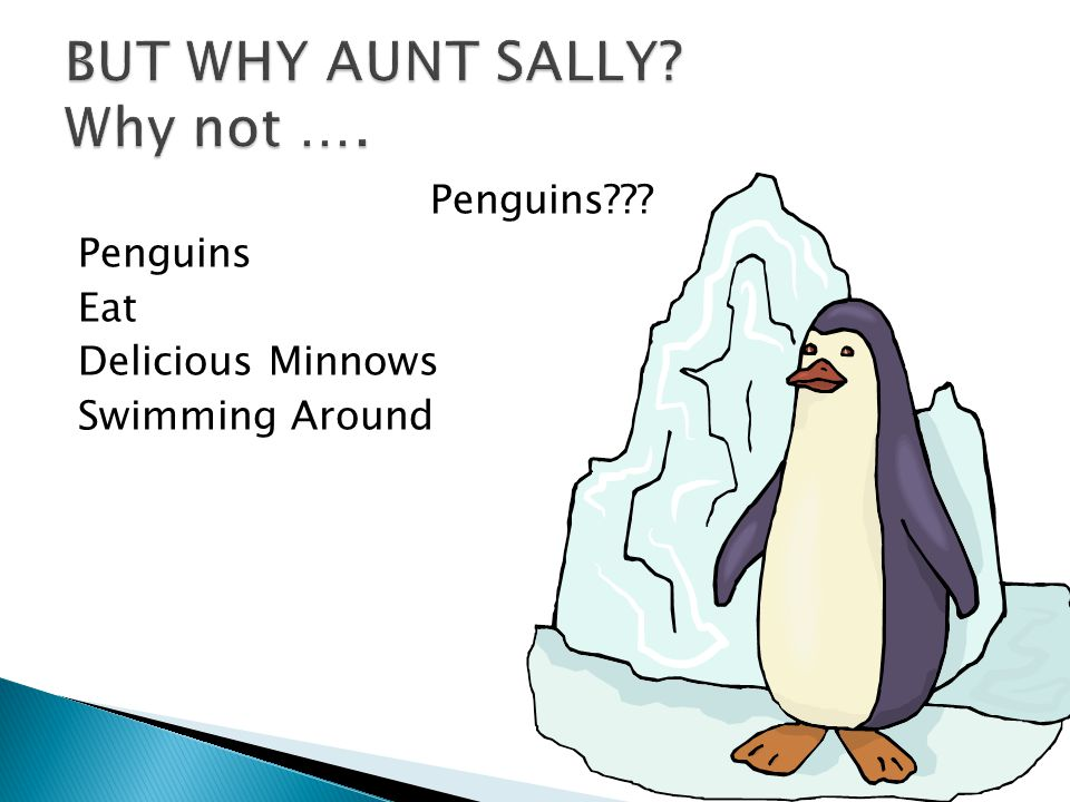 BUT WHY AUNT SALLY Why not ….