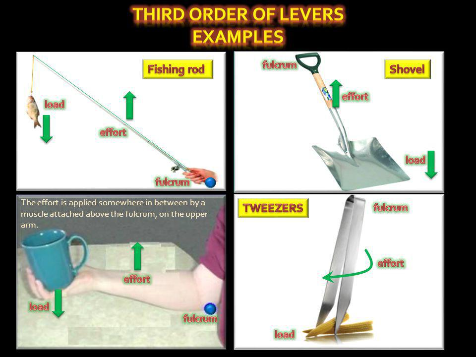 third order of levers Examples
