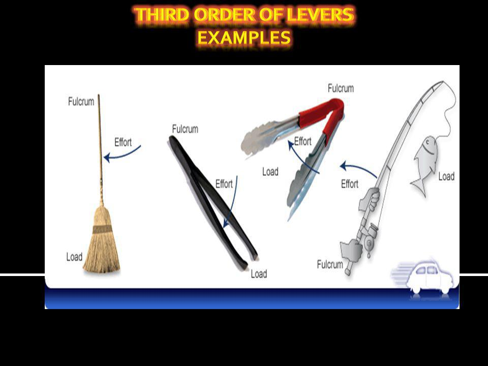 third order of levers Examples Third order of levers