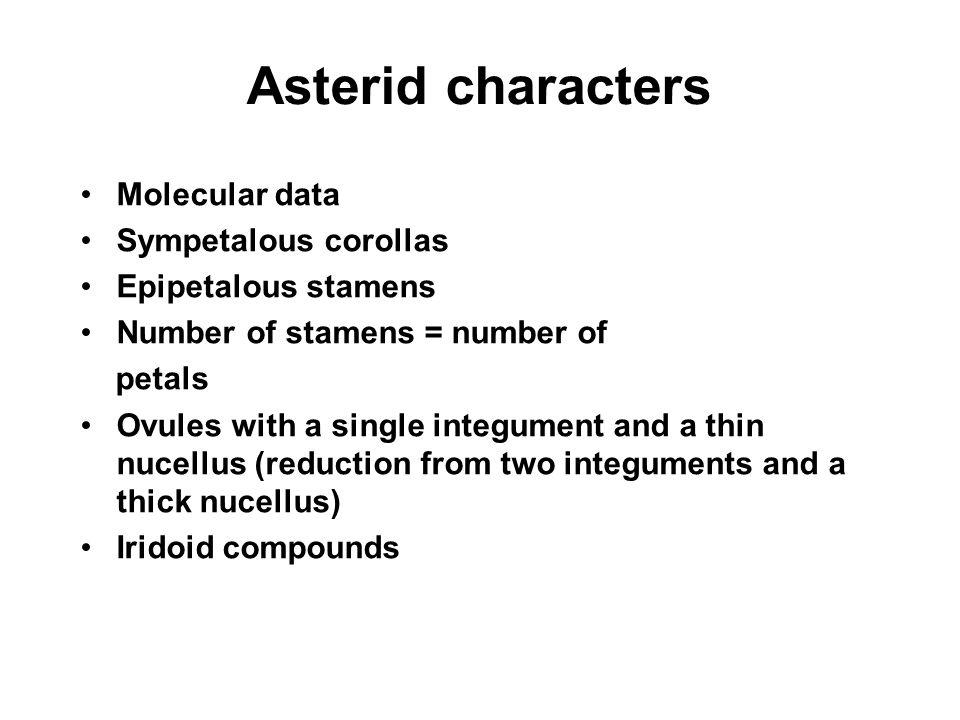 Asterid characters Molecular data Sympetalous corollas