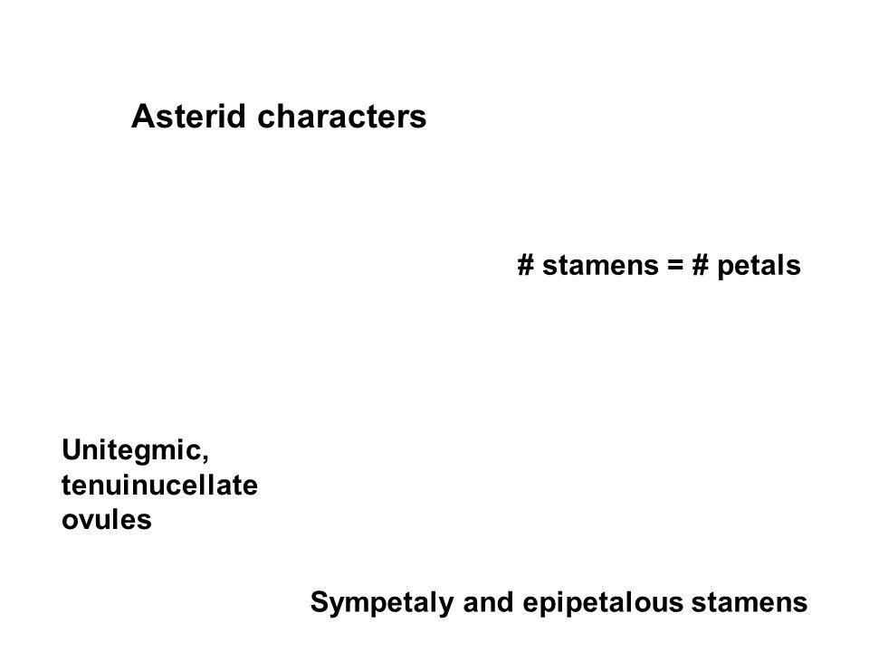 Asterid characters # stamens = # petals Unitegmic, tenuinucellate