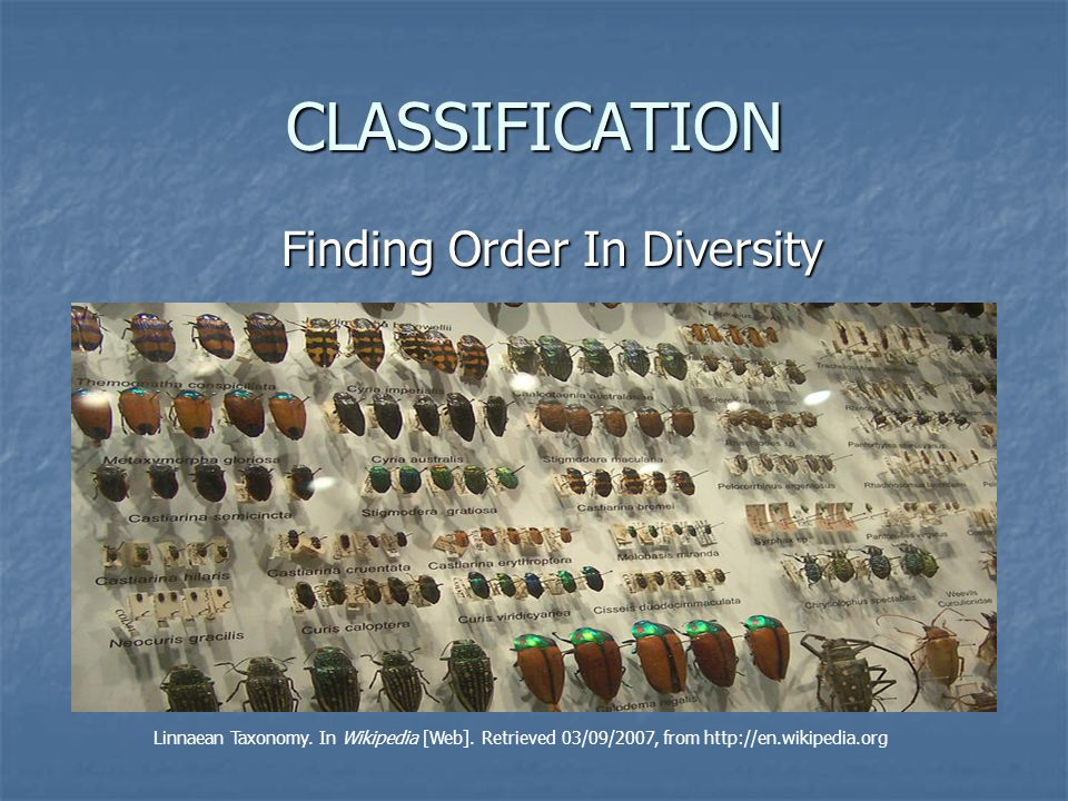 Finding Order In Diversity