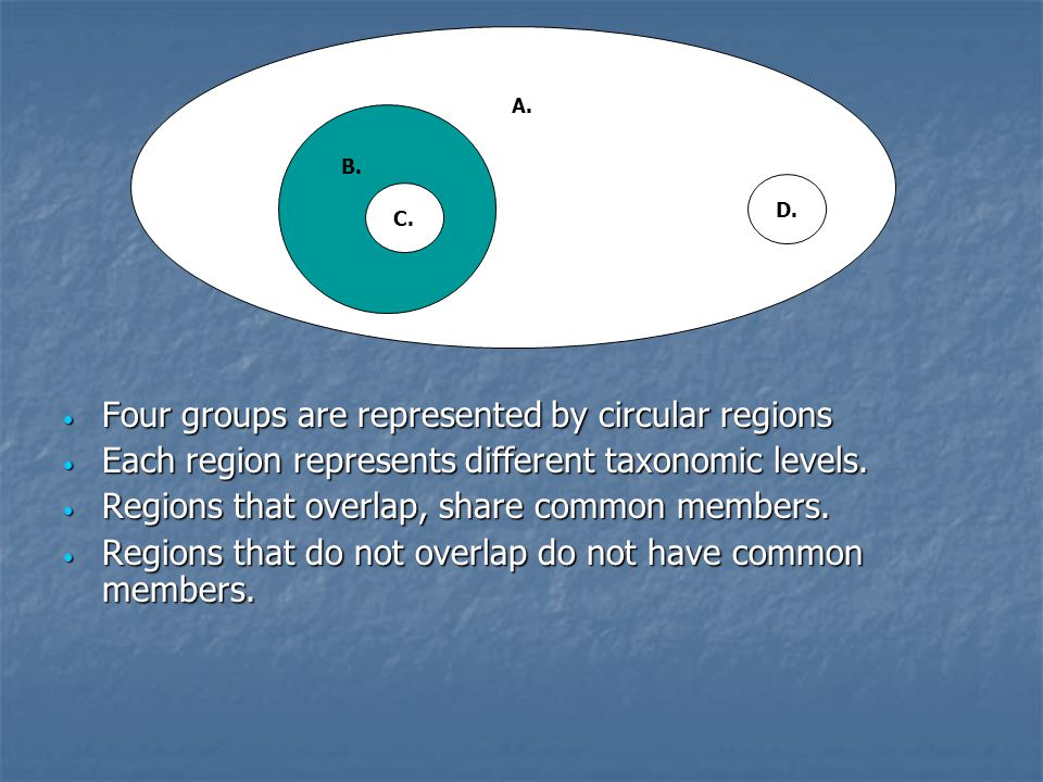 Four groups are represented by circular regions