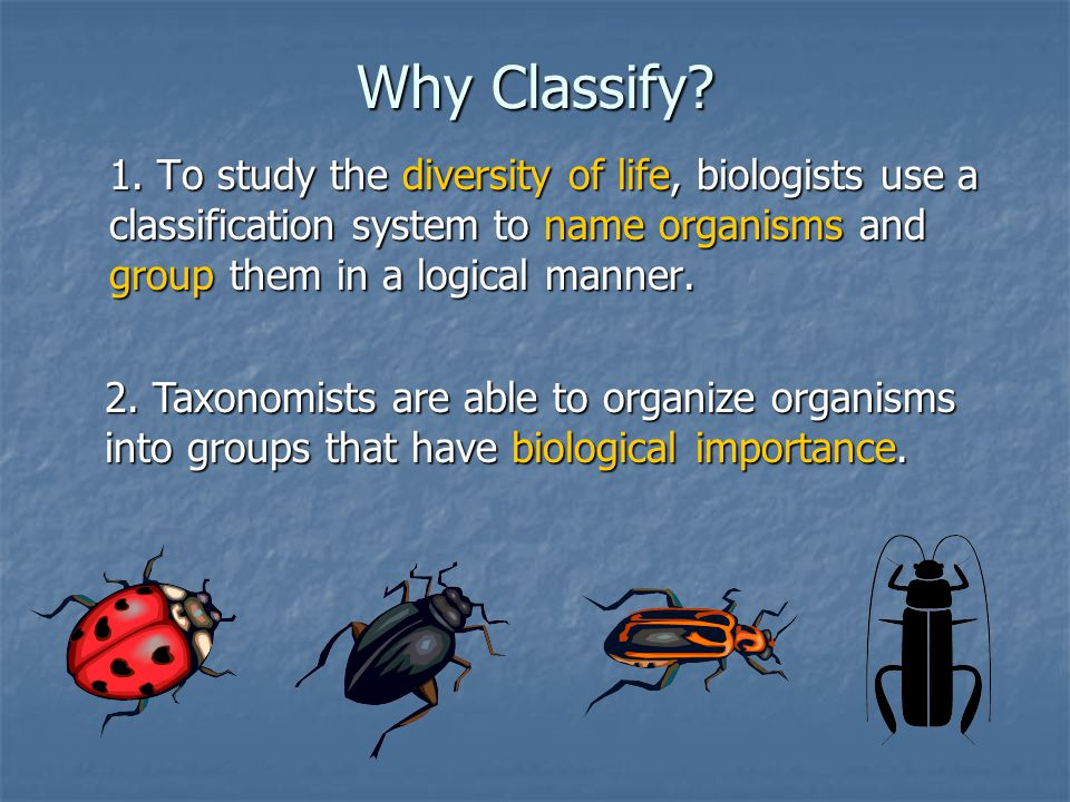 Why Classify 1. To study the diversity of life, biologists use a classification system to name organisms and group them in a logical manner.