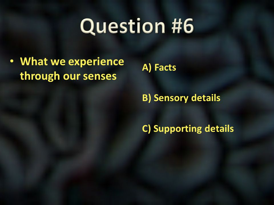 Question #6 What we experience through our senses