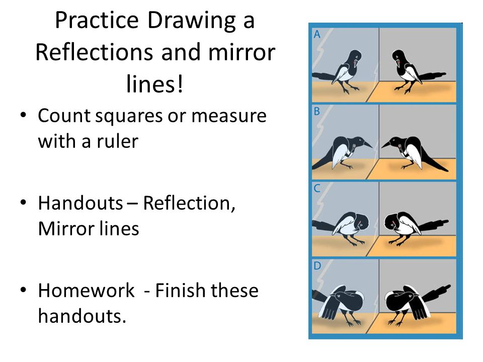 Practice Drawing a Reflections and mirror lines!