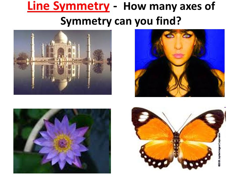 Line Symmetry - How many axes of Symmetry can you find