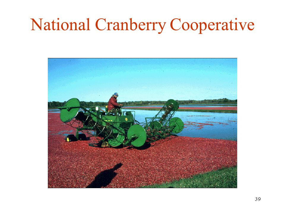 National Cranberry Cooperative