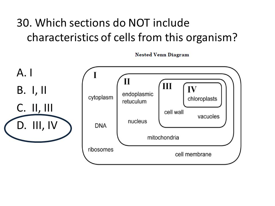 30. Which sections do NOT include characteristics of cells from this organism