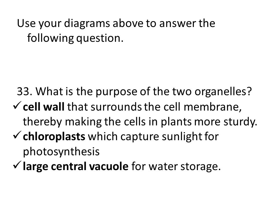 Use your diagrams above to answer the following question.