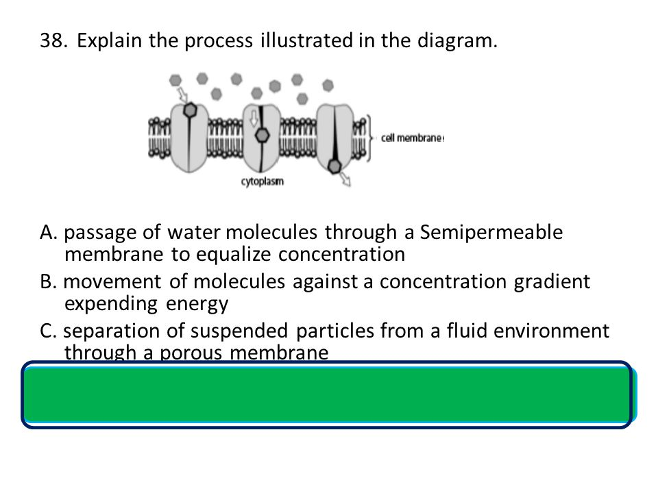 Explain the process illustrated in the diagram.