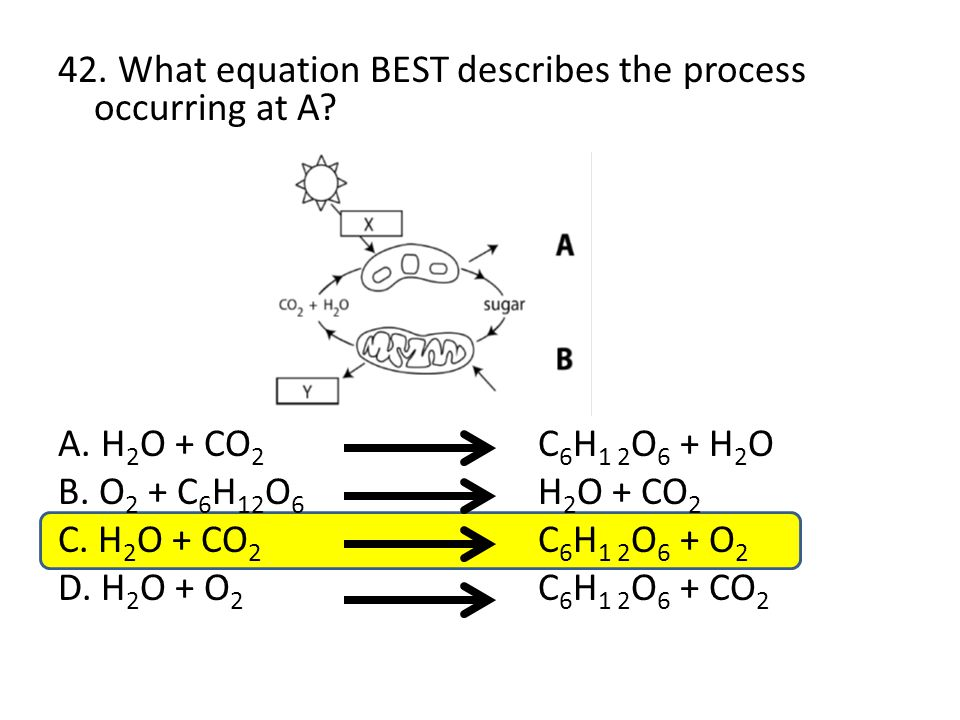 42. What equation BEST describes the process occurring at A