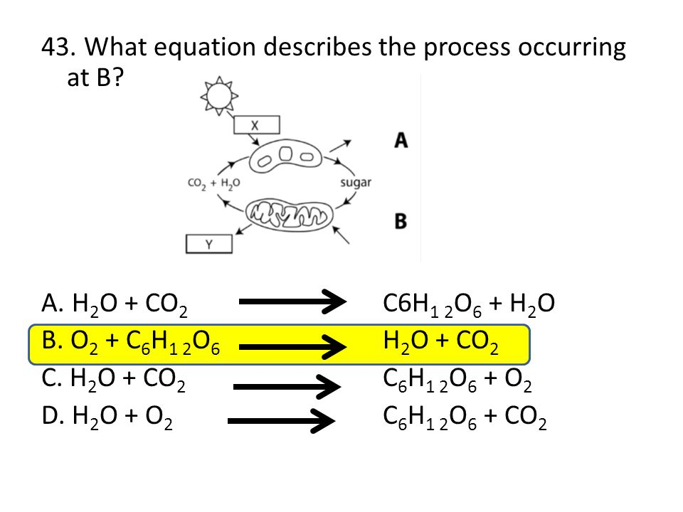 43. What equation describes the process occurring at B