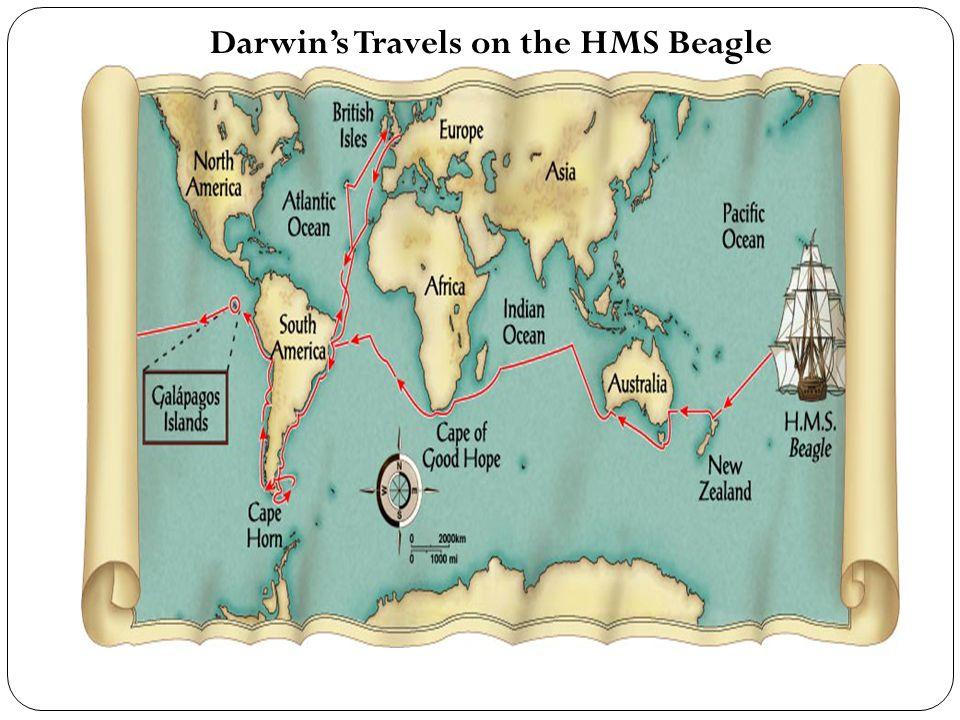 Darwin's Travels on the HMS Beagle