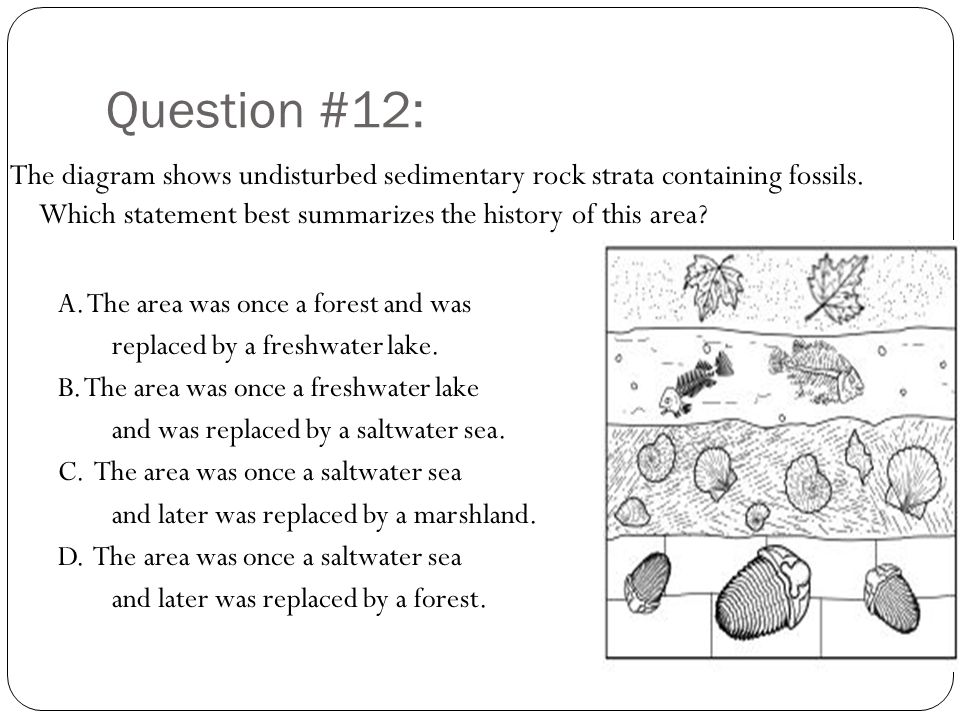 Question #12: The diagram shows undisturbed sedimentary rock strata containing fossils. Which statement best summarizes the history of this area