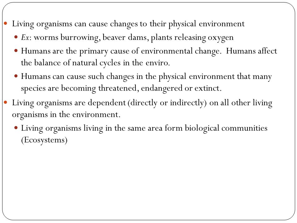 Living organisms can cause changes to their physical environment