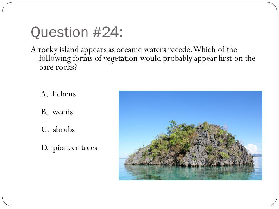 Question #24: