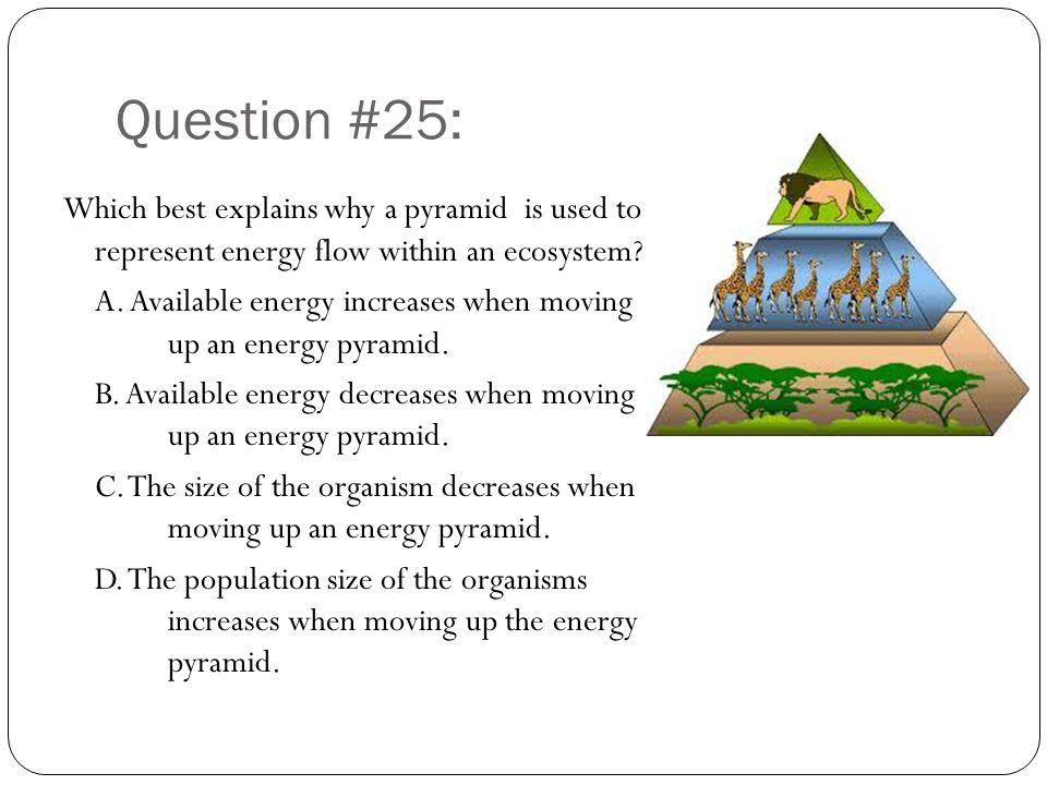 Question #25: