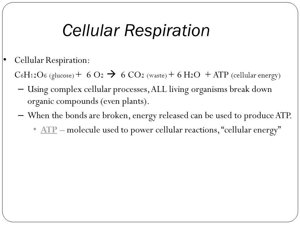 Cellular Respiration Cellular Respiration: