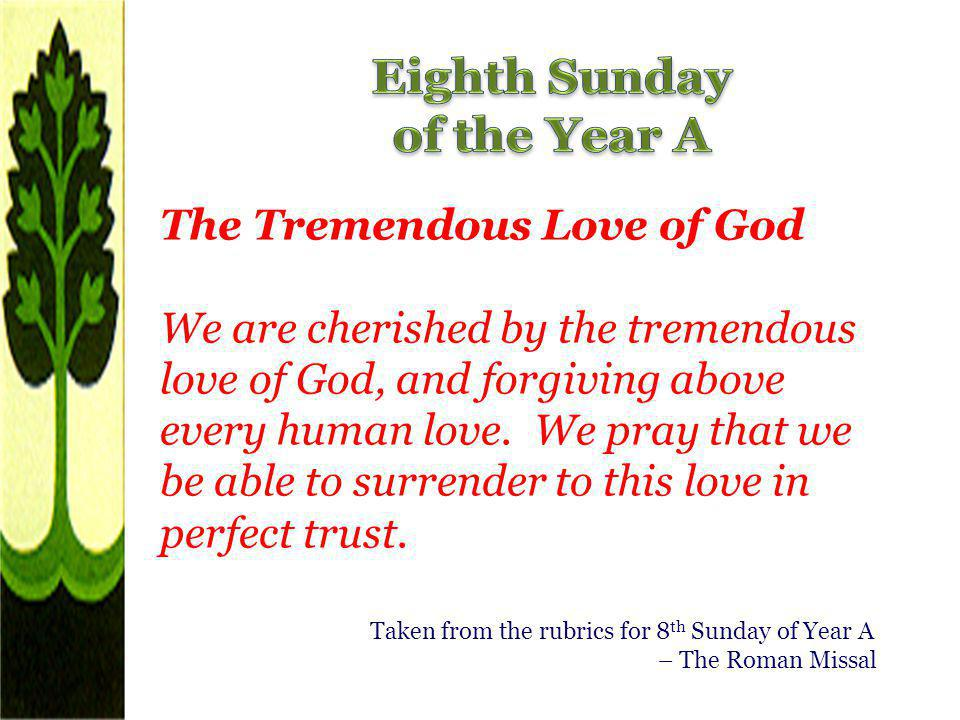 Eighth Sunday of the Year A