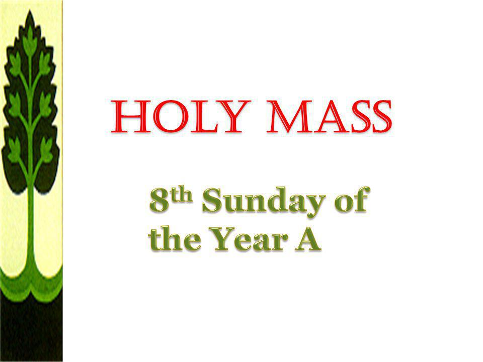 Holy Mass 8th Sunday of the Year A
