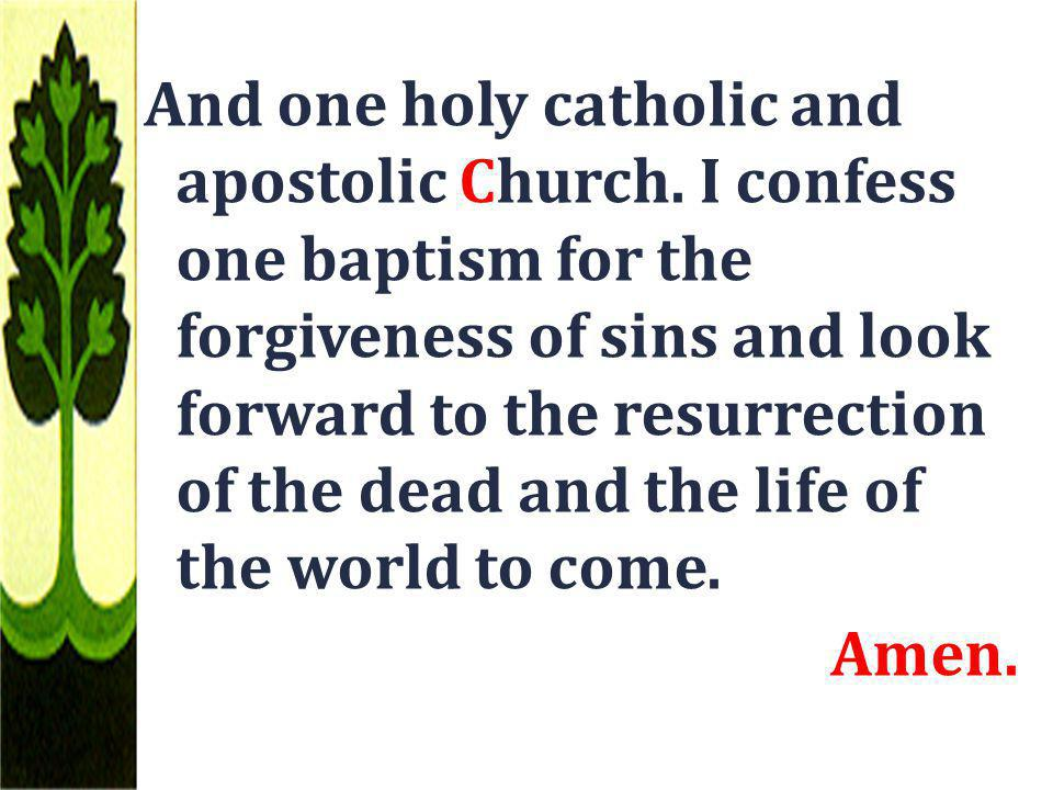 And one holy catholic and apostolic Church