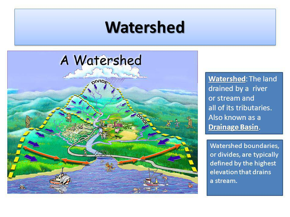 Watershed Watershed: The land drained by a river or stream and