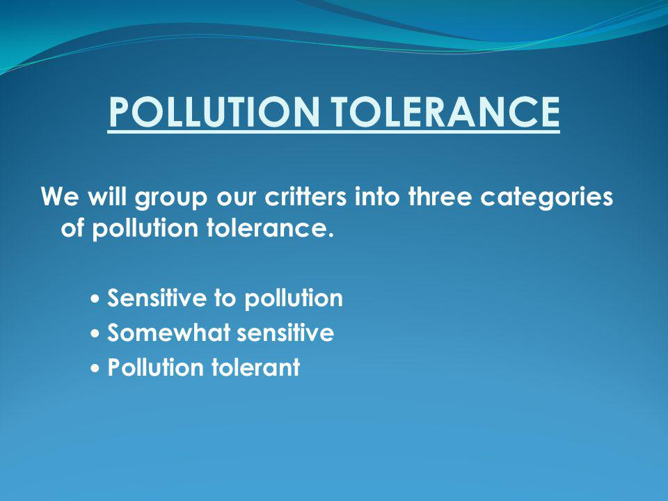 POLLUTION TOLERANCE We will group our critters into three categories of pollution tolerance. Sensitive to pollution.